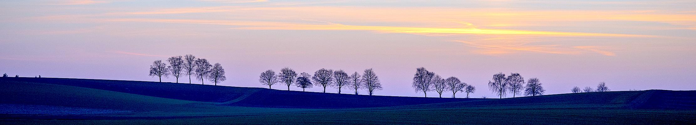 11 марта (24 марта) 2017. Вечерний свет над Бад-Раппенау в Южной Германии.