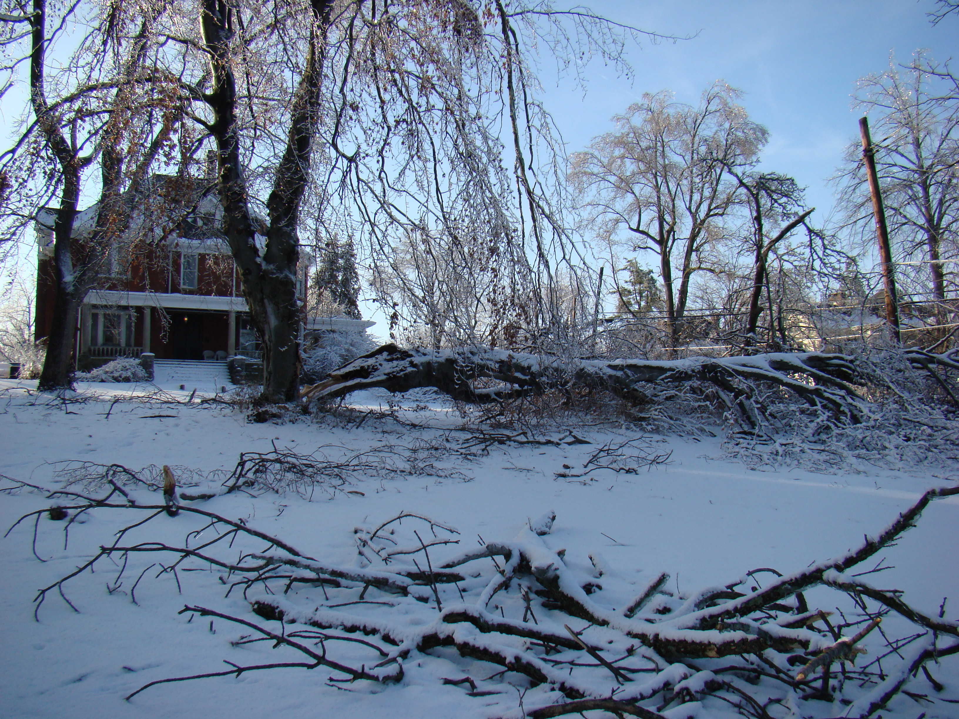 File:2009 winter storm damage; South Broadway Street ...