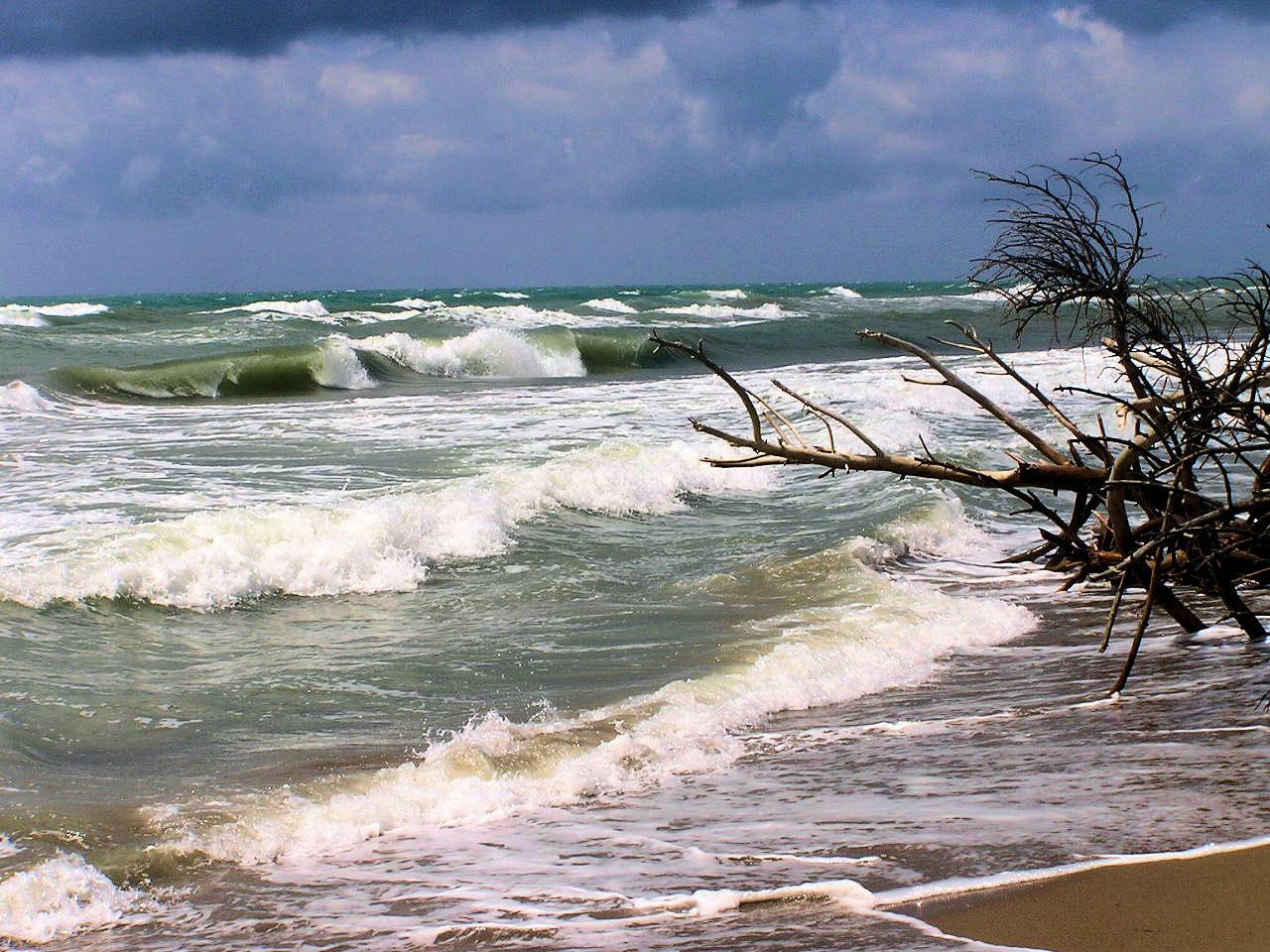 Alberese il mare.jpg