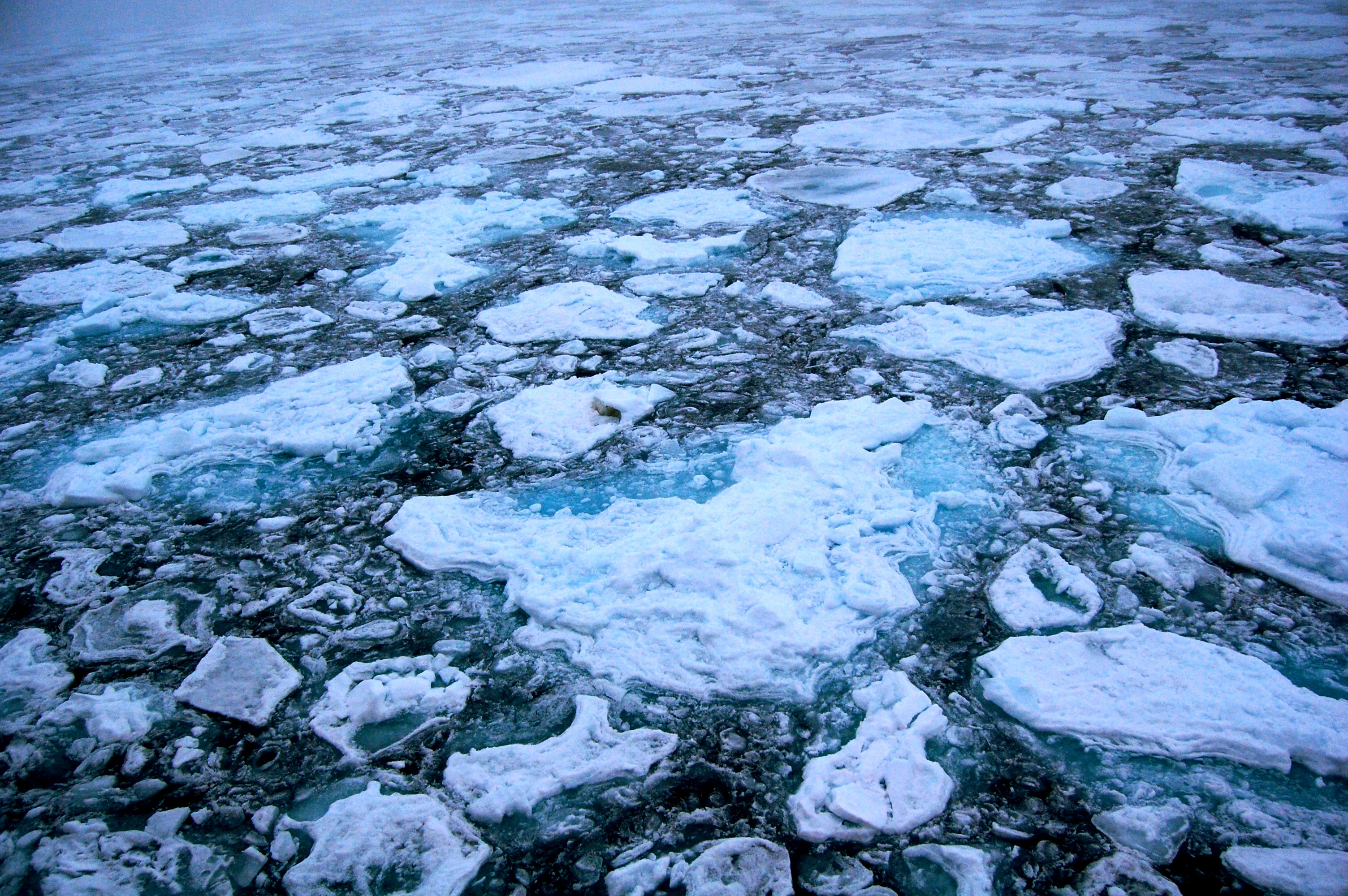 NASA Finds Arctic Ice Melt Forms Clouds that Fuel Warming