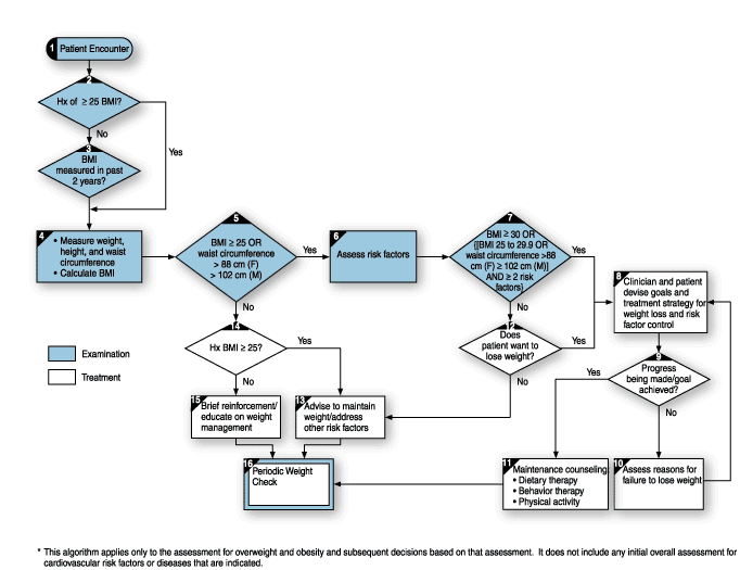 Assessment and treatment algorithm for overweight and obesity