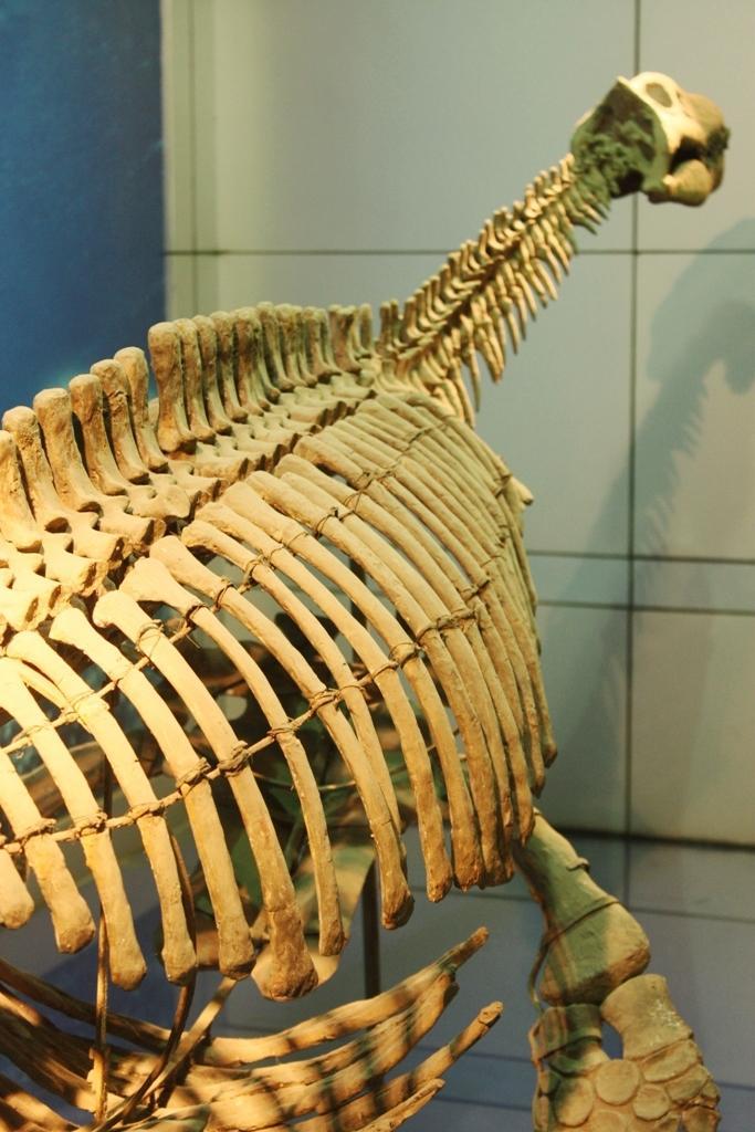 bishanopliosaurus
