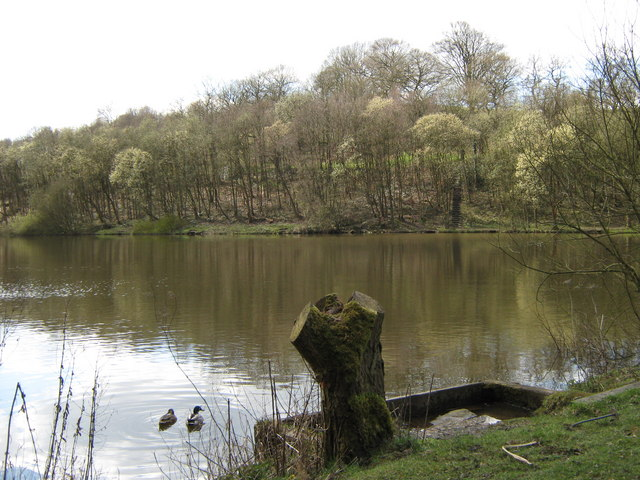 Cumberledge Pool, Deep Hayes Country Park - geograph.org.uk - 1230142