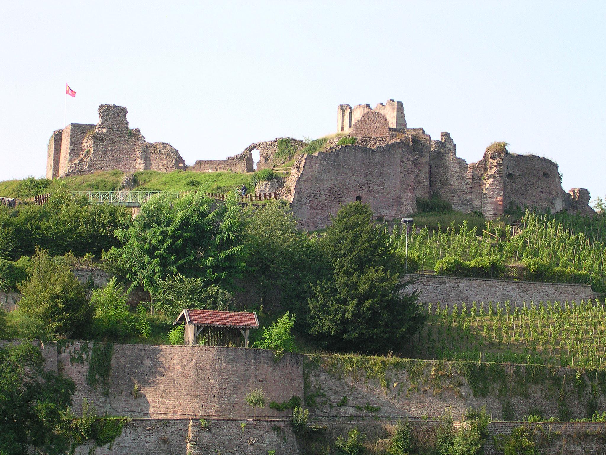Epinal_chateau1.jpg