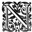 Fancy Letter N.jpg