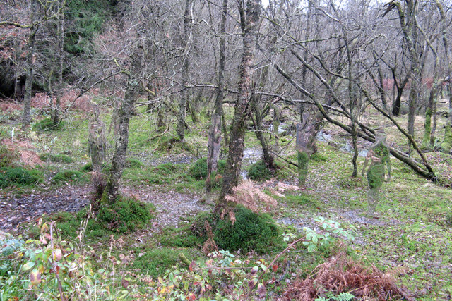 Forest park figures - geograph.org.uk - 1591495