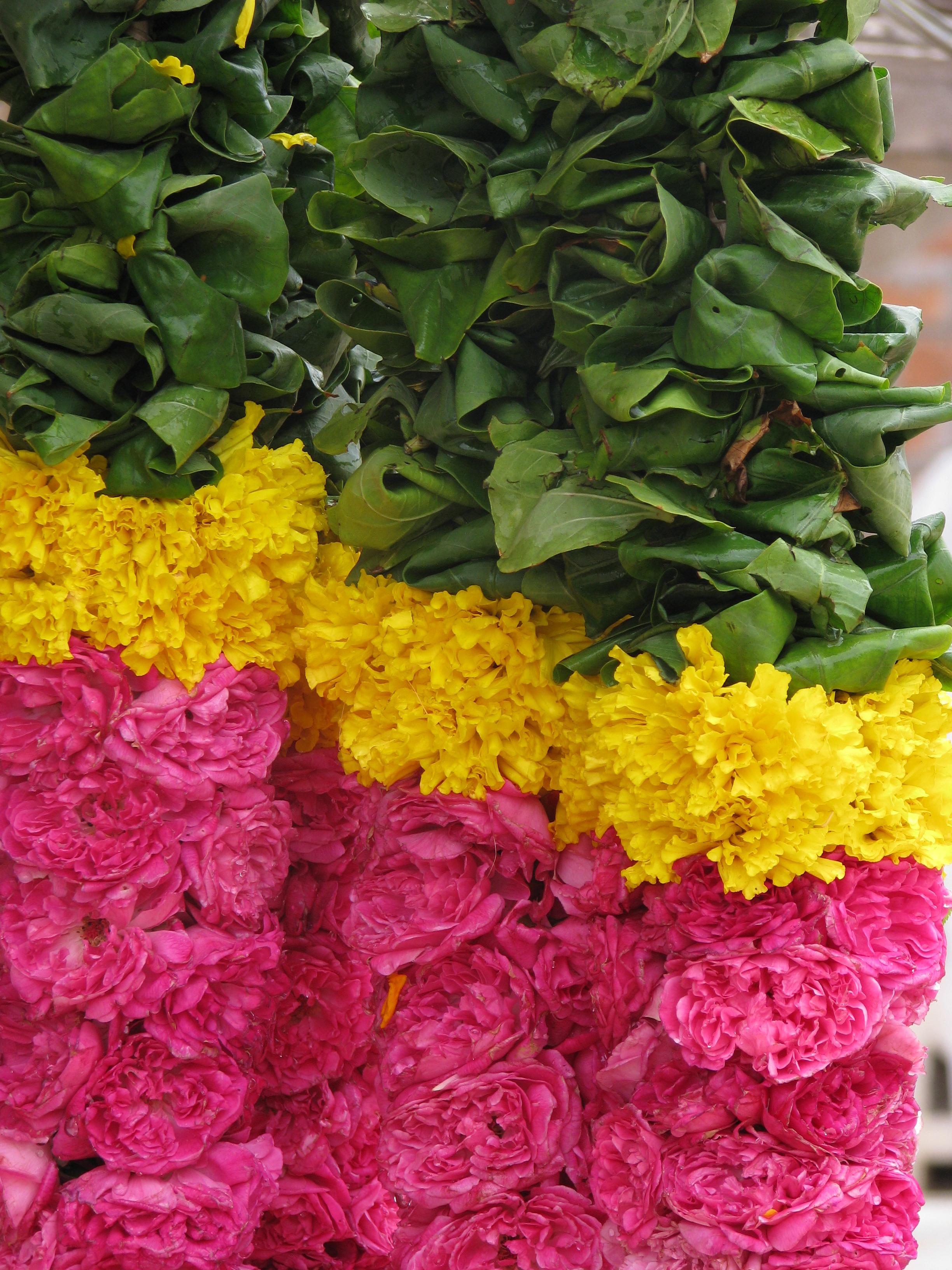 Marigold Market And Cafe Spring Lake Menu