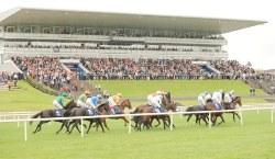 Limerick Racecourse horse racing venue in the Republic of Ireland