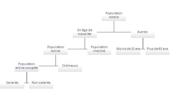 Organigramme logique définissant la population active