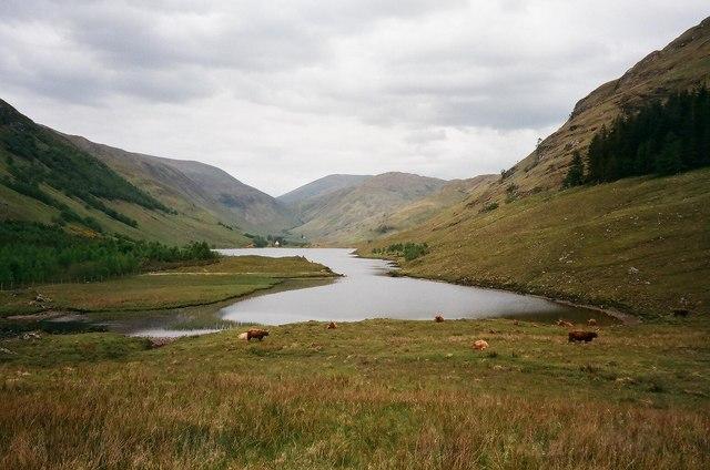 Peaceful scene by Loch na Leitreach - geograph.org.uk - 854841