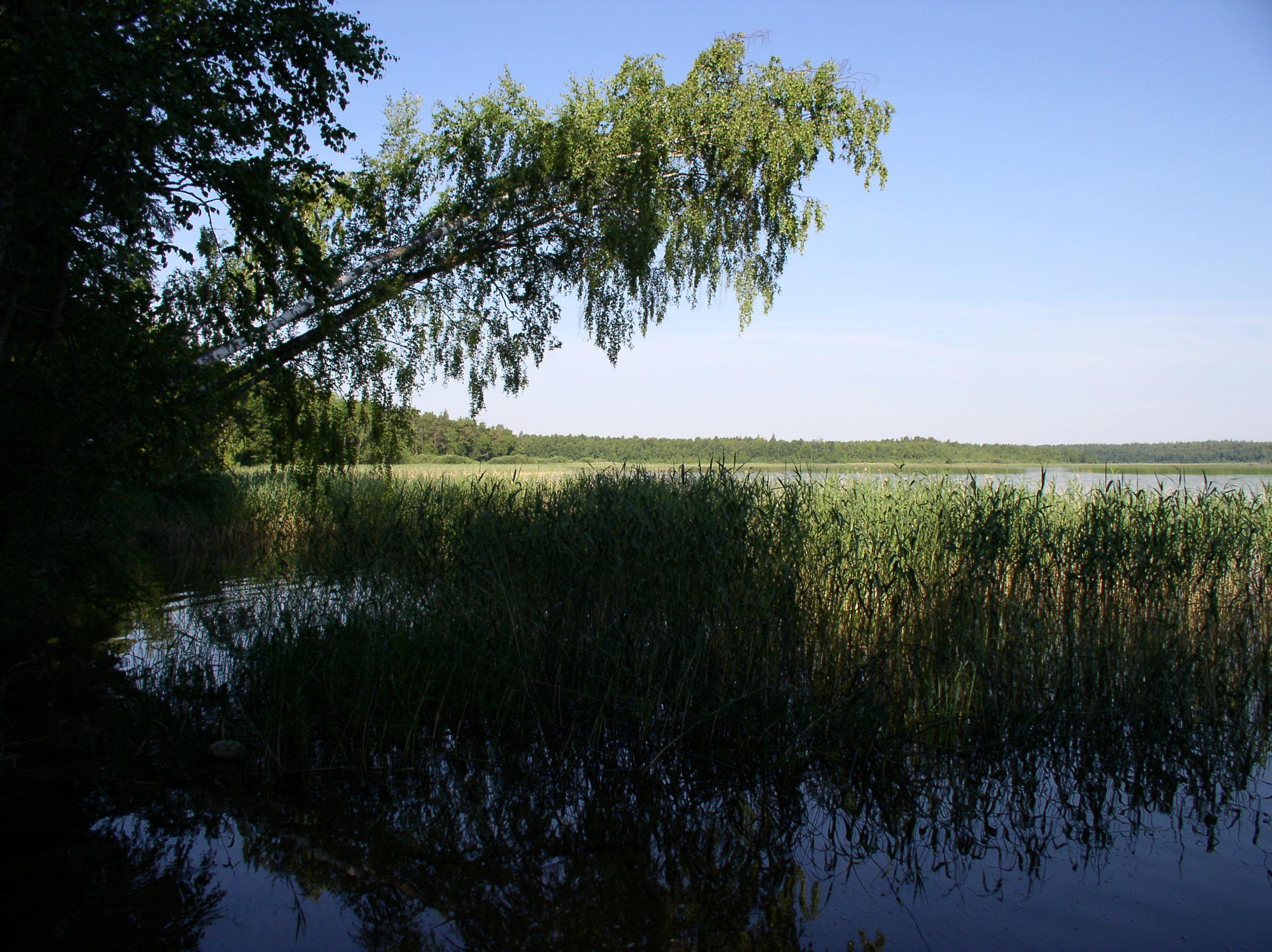 озеро двинье рыбалка