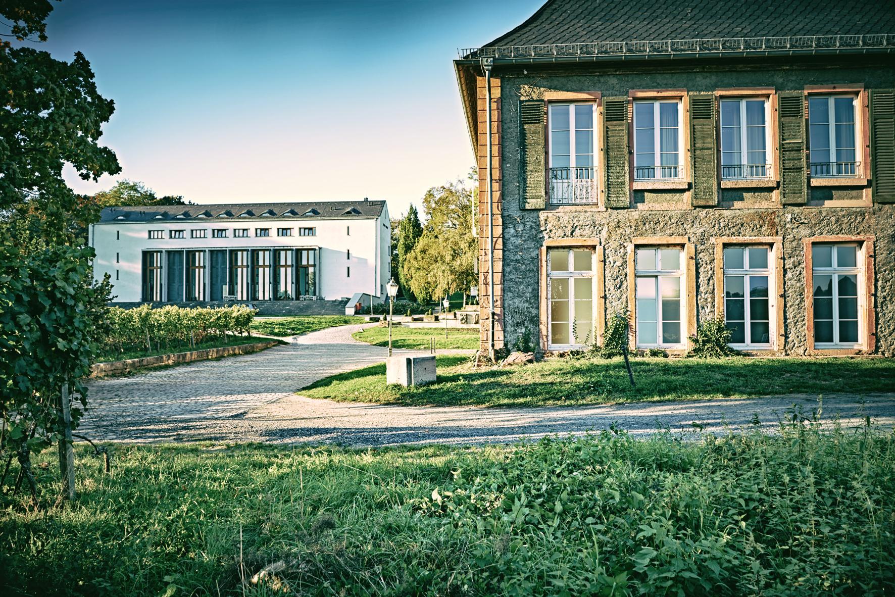 EBS Universität für Wirtschaft und Recht – Wikipedia
