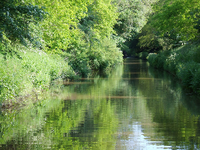 Shropshire Union Canal approaching Tyrley Locks, Staffordshire - geograph.org.uk - 1606246