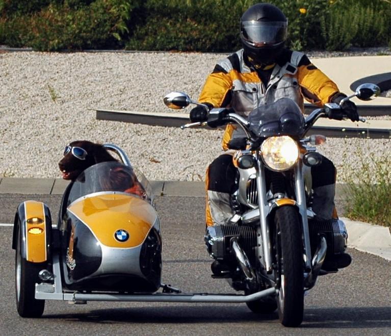 Sinsheim_-_Motorradgespann_BMW_mit_ein_Hund.JPG