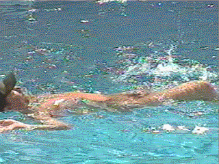 file skinnydipping frame png   wikimedia commons