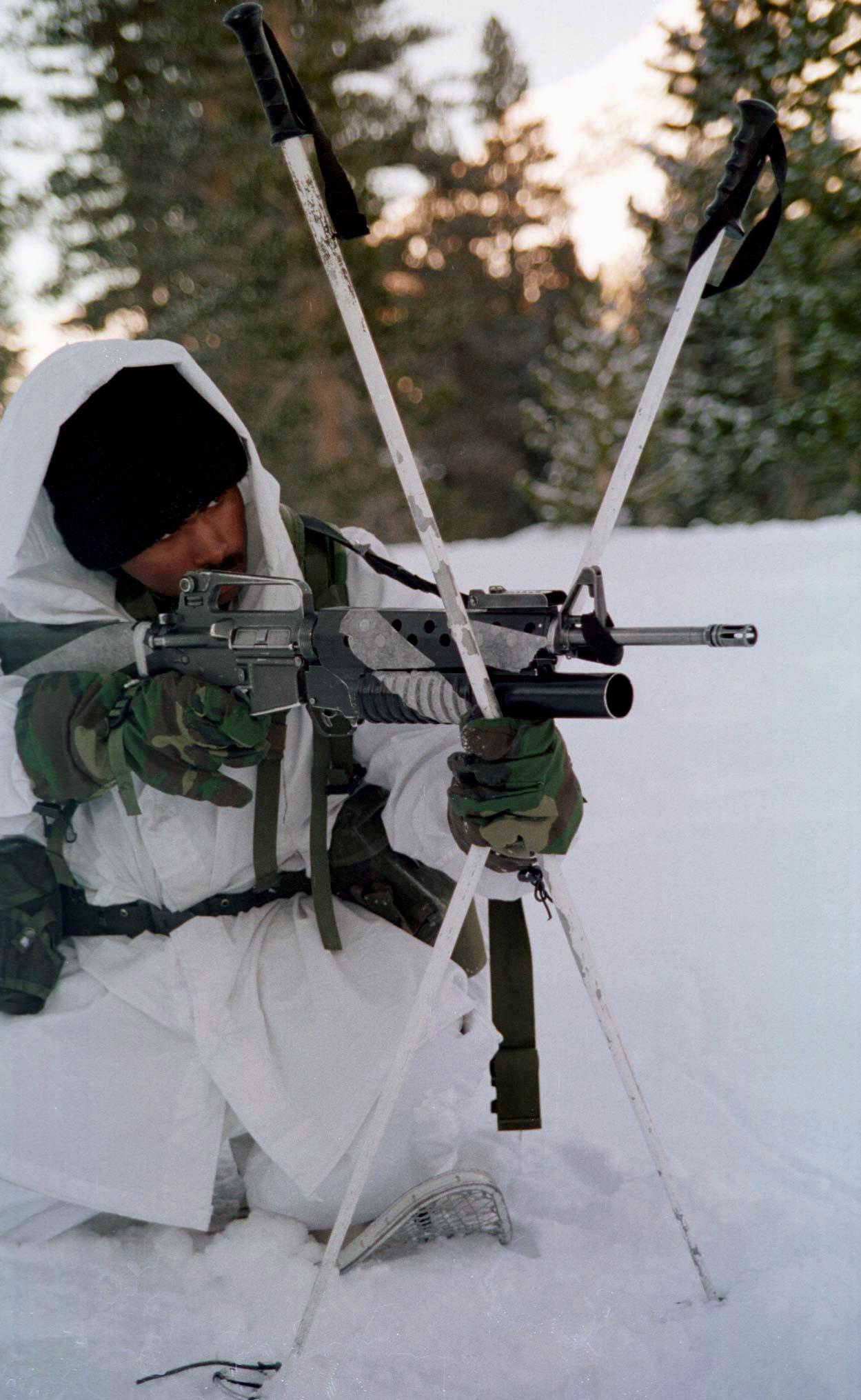 File:Sturmgewehr M16A2 mit Granatwerfer.jpg - Wikimedia ...