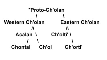 The Ch'olan sub-group of Mayan languages