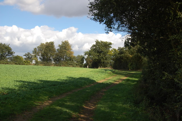 The Essex Way 74 - geograph.org.uk - 2068157