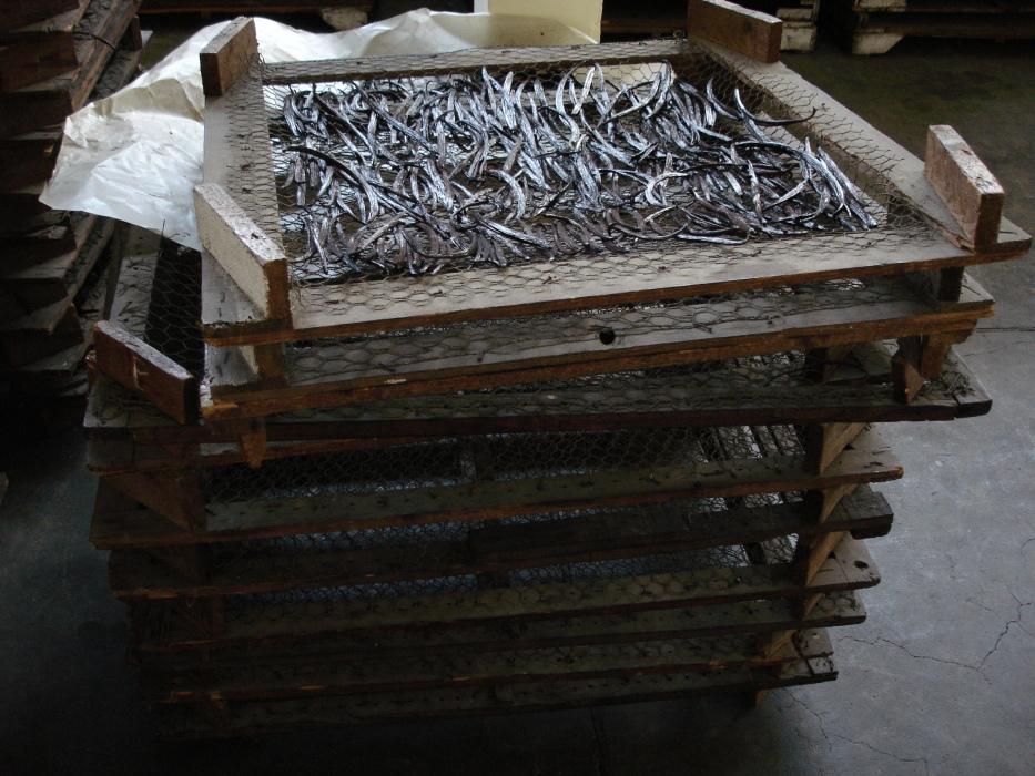 Vanilla fruits drying