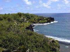 Black sand beach at Wainapanapa, in Maui.