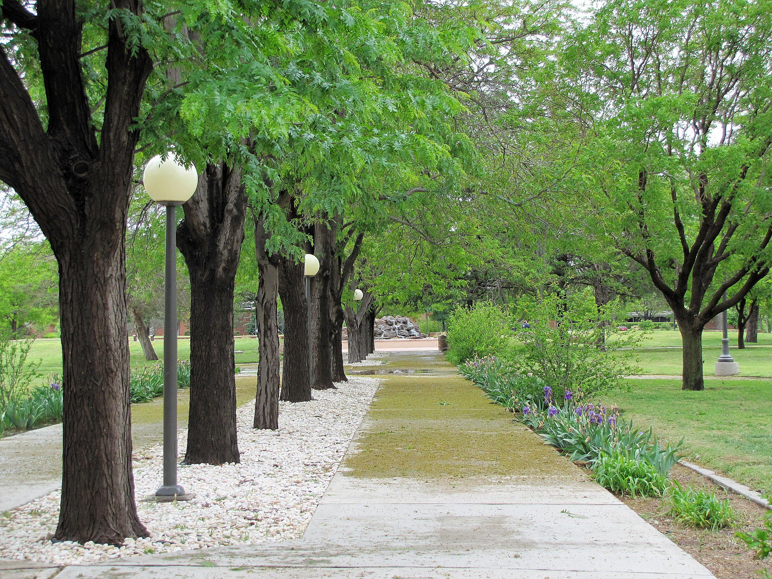 file walkway outside golden library nmu jpg wikimedia commons