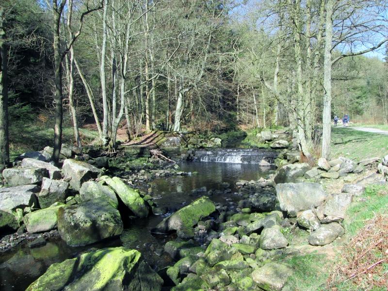 Weir on River Washburn-geograph-4450608-by-Martin-Dawes