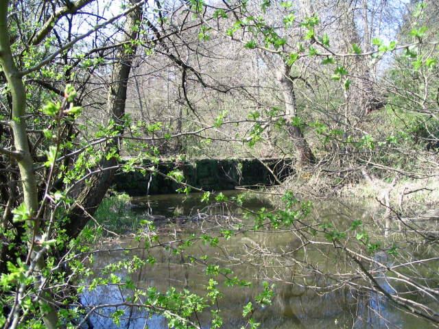 Weir on pond, Calke Park - geograph.org.uk - 401822