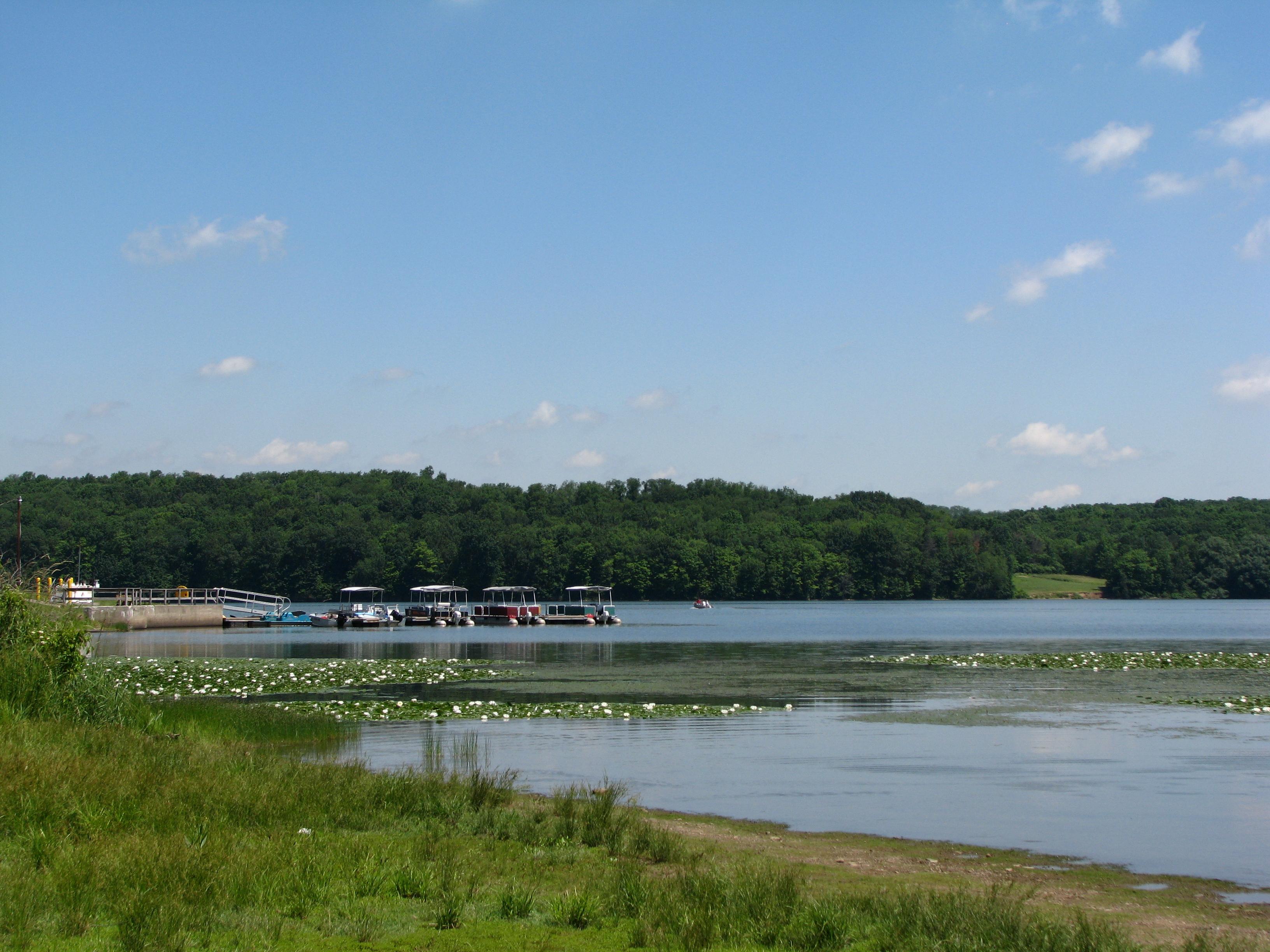 Yellow Creek State Park - Wikipedia