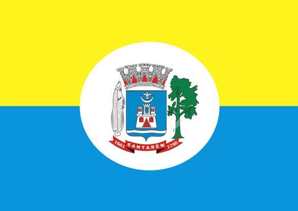 Ficheiro:Bandeira Santarem.png