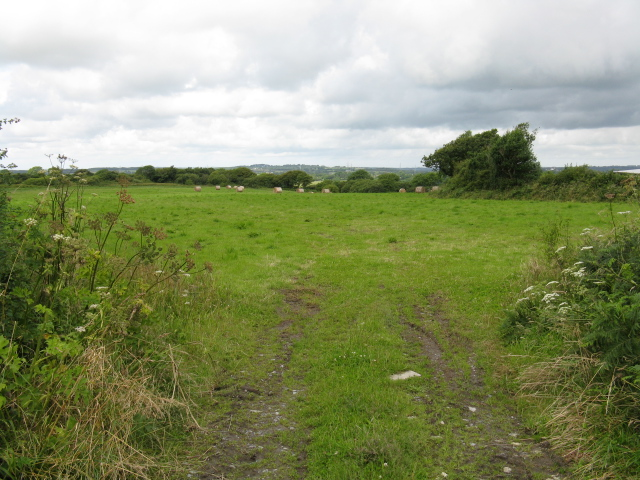 Field Near North Vatson Farm - geograph.org.uk - 1413354