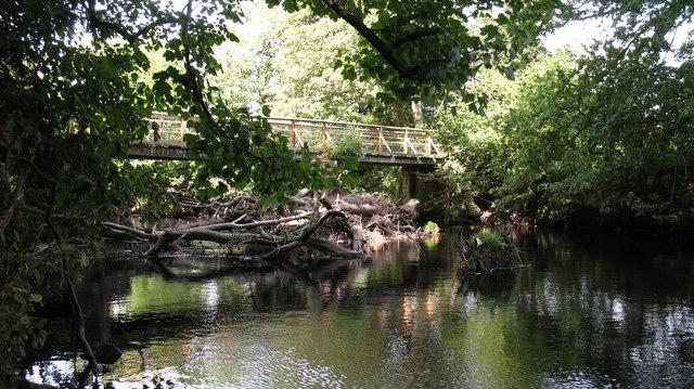 Footbridge over the Nidd. - geograph.org.uk - 541245