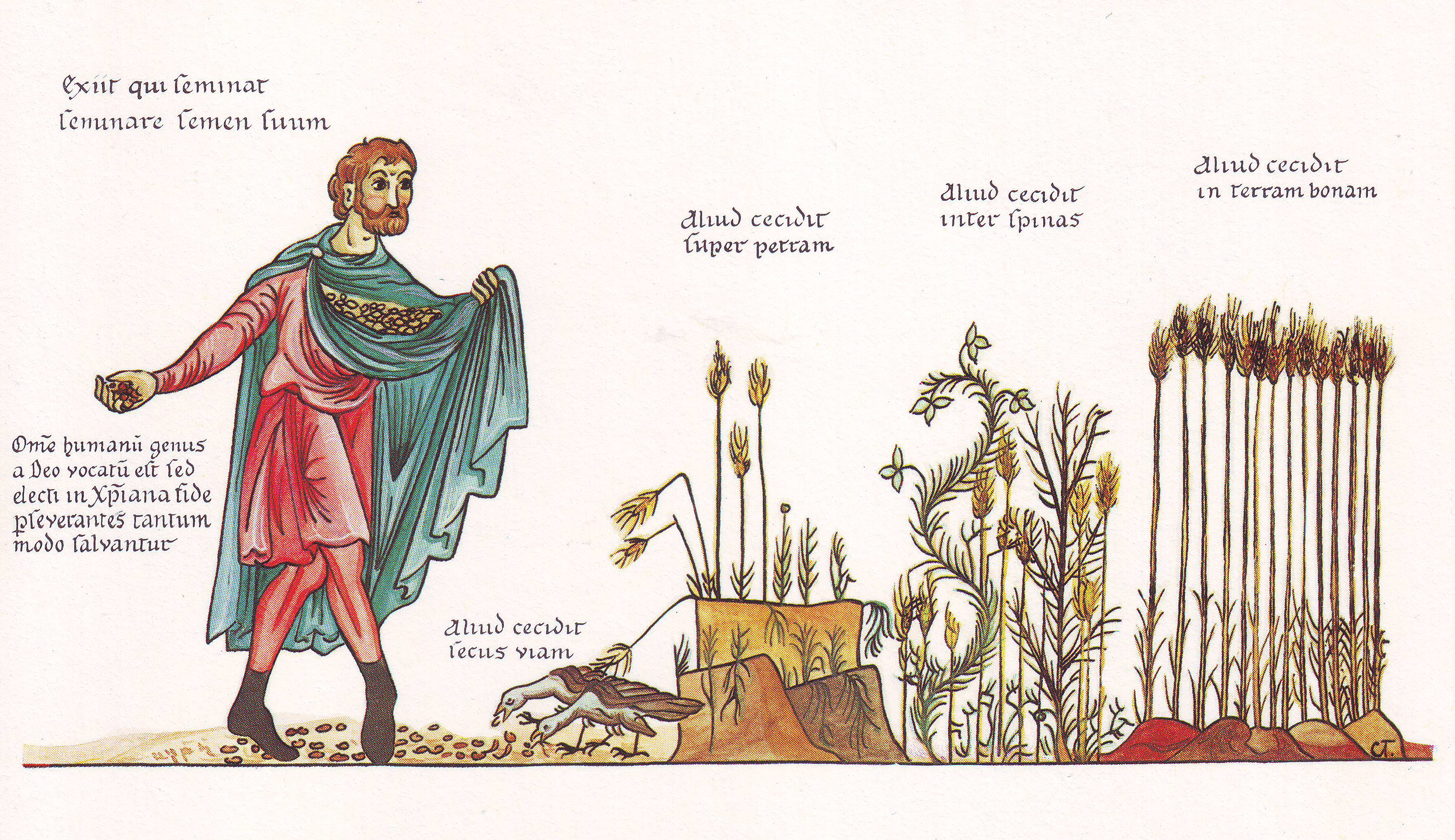 Parábola del sembrador - Wikipedia, la enciclopedia libre