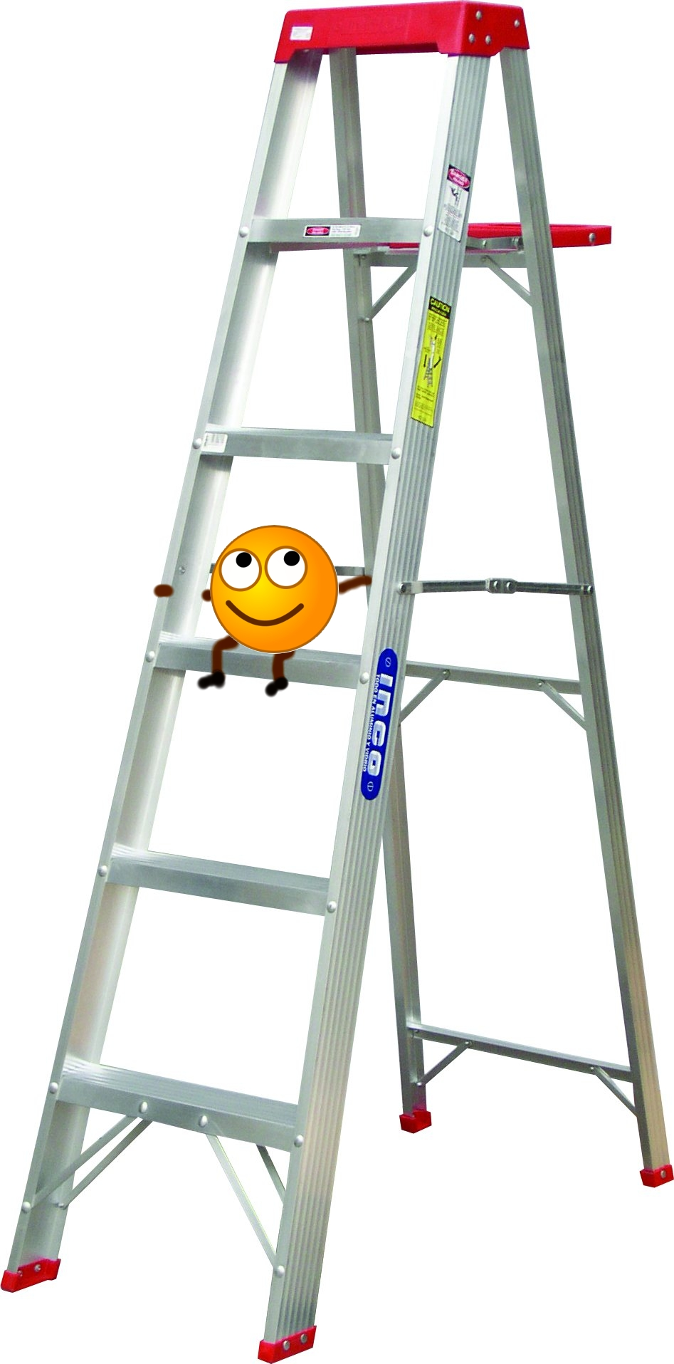 Step Ladder To Get Into Bed
