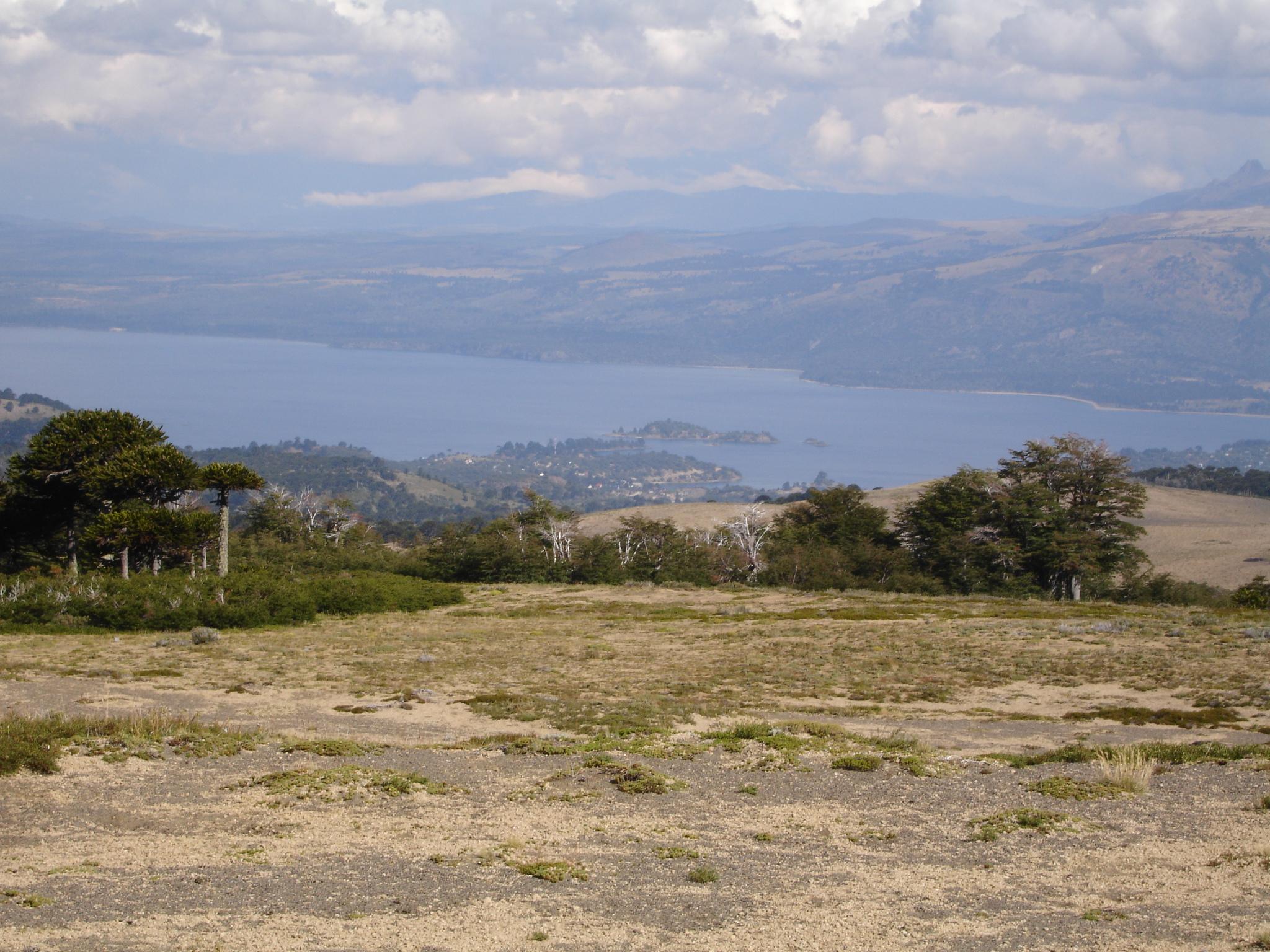 El lago Aluminé desde el volván Batea Mahuida - Foto: Wikipedia