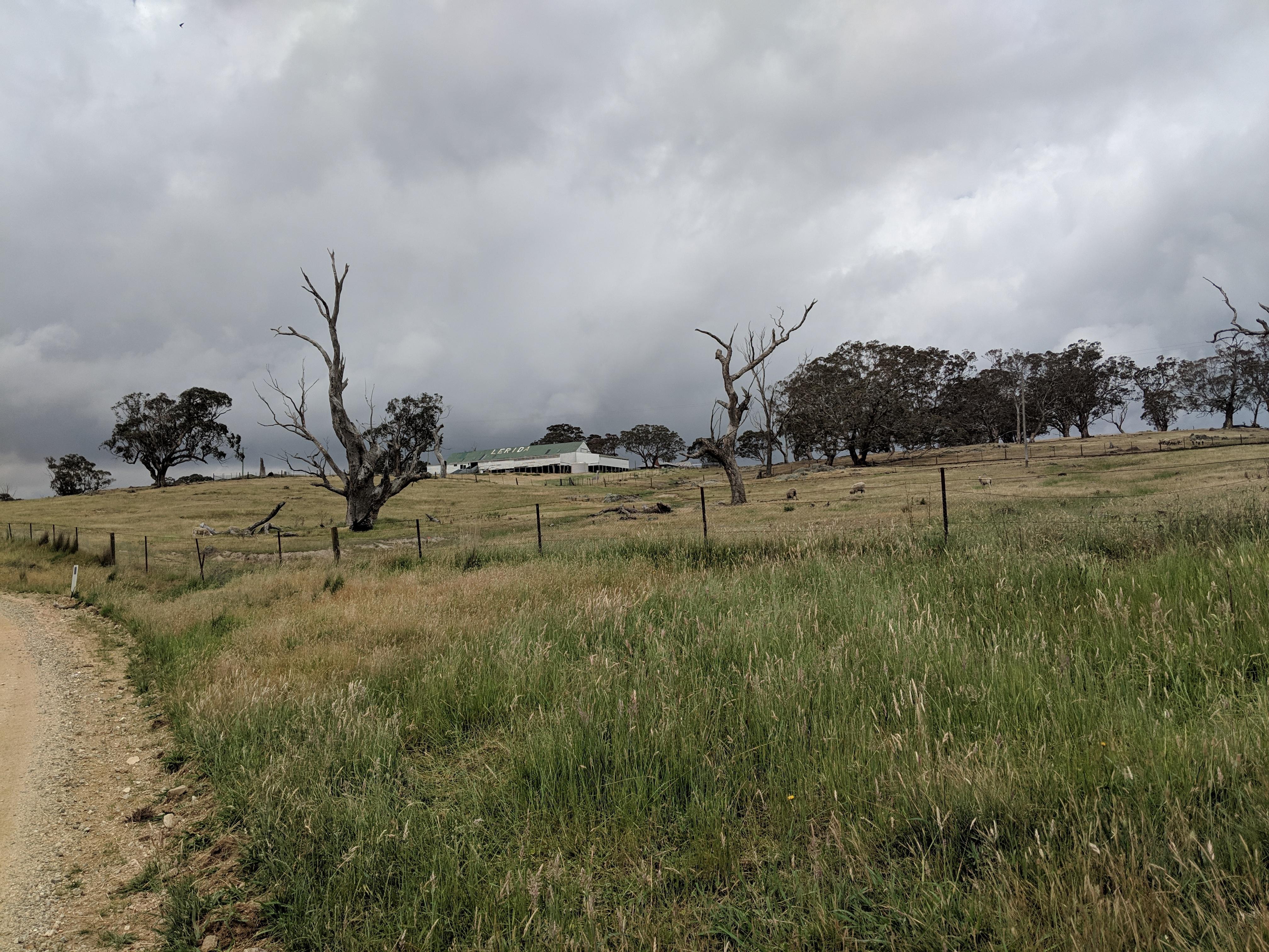 Lerida, New South Wales - Wikipedia