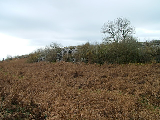 Limestone outcrop on Hutton Roof Crags - geograph.org.uk - 1560695