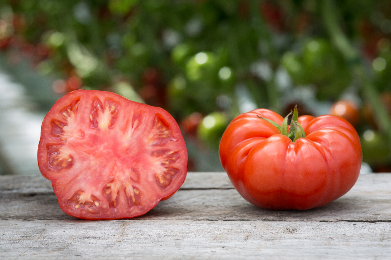 Description Lufa Farms Beefsteak Tomato jpgHeirloom Beefsteak Tomato