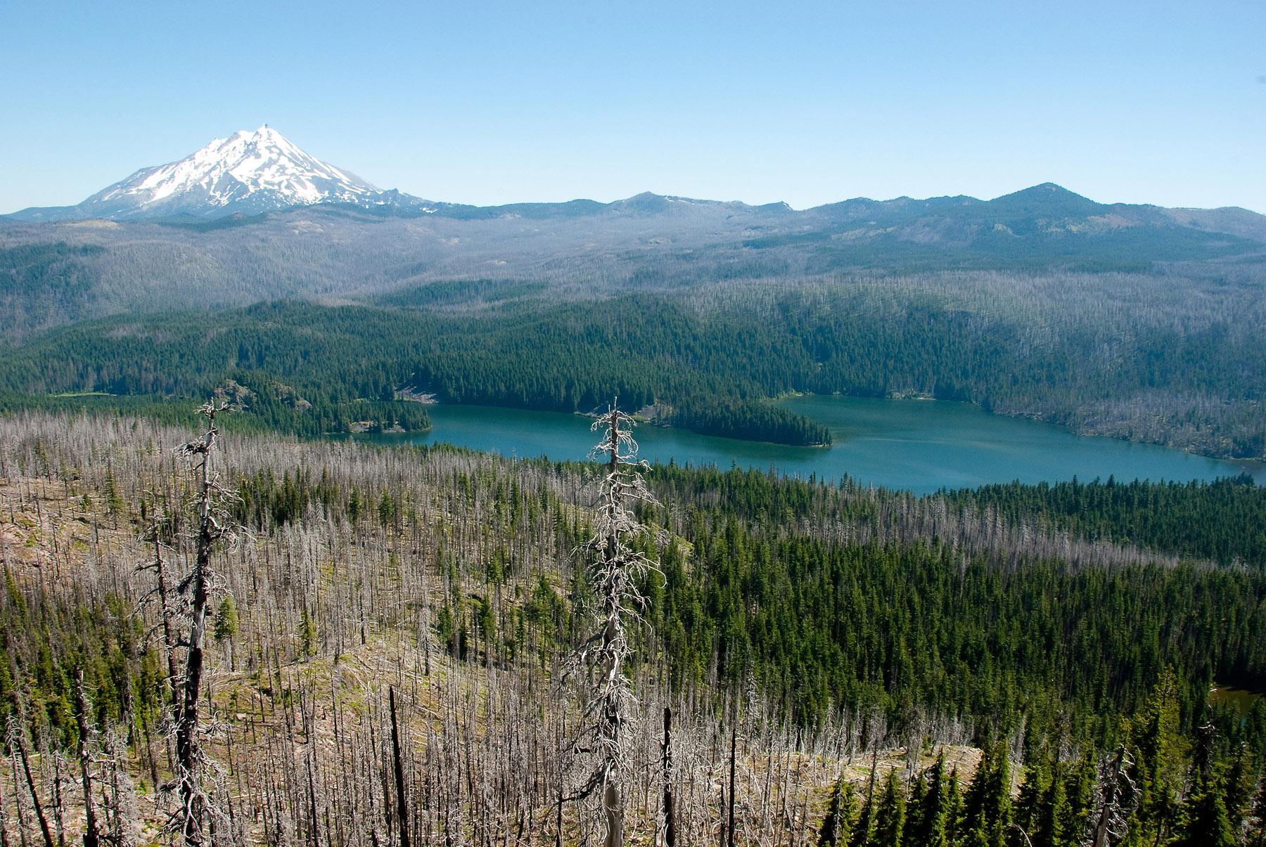 Marion Lake (Oregon) - Wikipedia