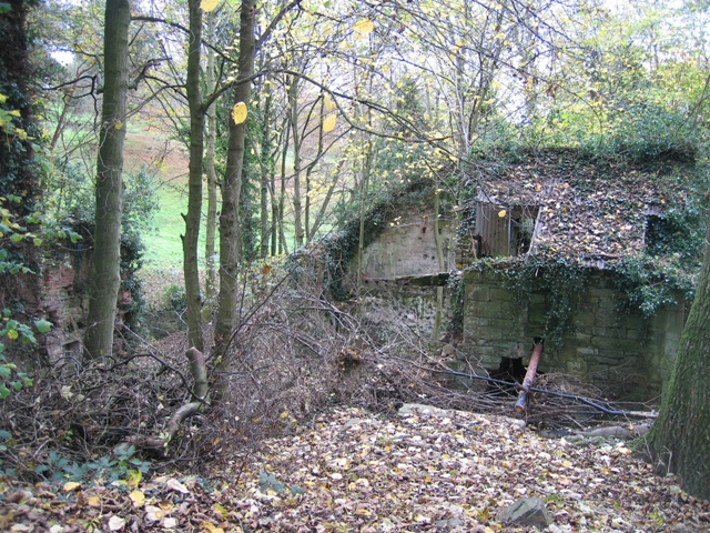 Ruined corn mill in Hawarden Park - geograph.org.uk - 628830