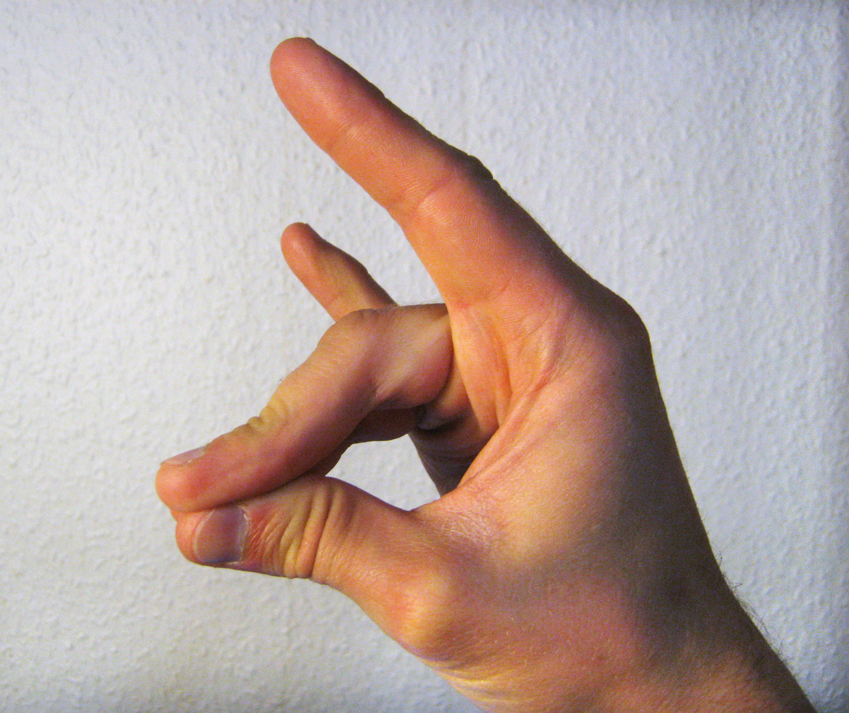 https://upload.wikimedia.org/wikipedia/commons/c/cc/Schweigefuchs.jpg