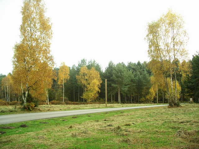 Sherwood Pines Forest Park - geograph.org.uk - 603909