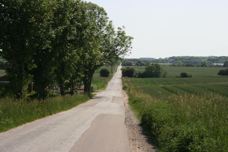 A straight Danish surveyor road