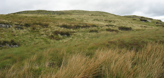 The southern slopes of Foel Fras - geograph.org.uk - 565343