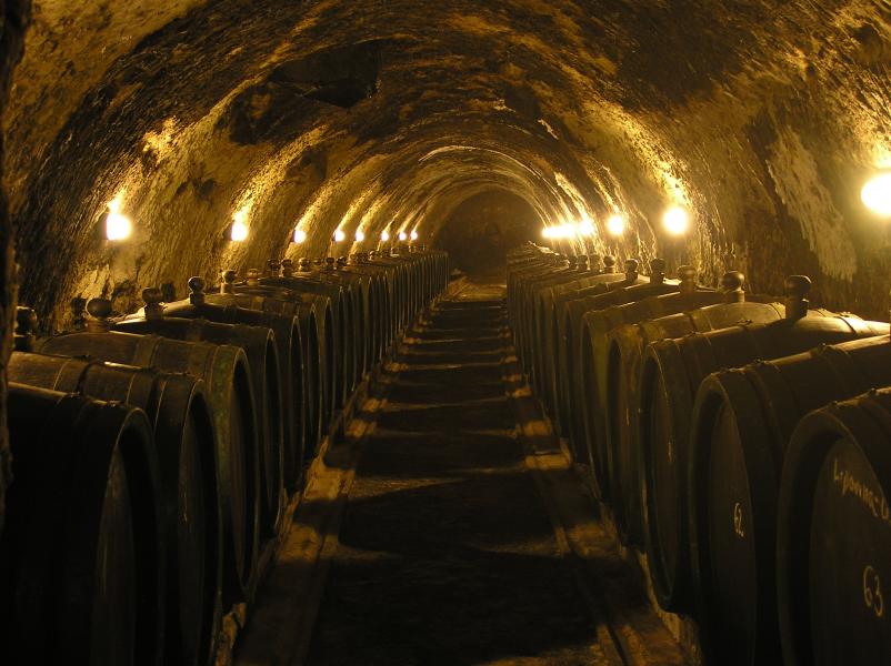 Tokaj wine cellar.