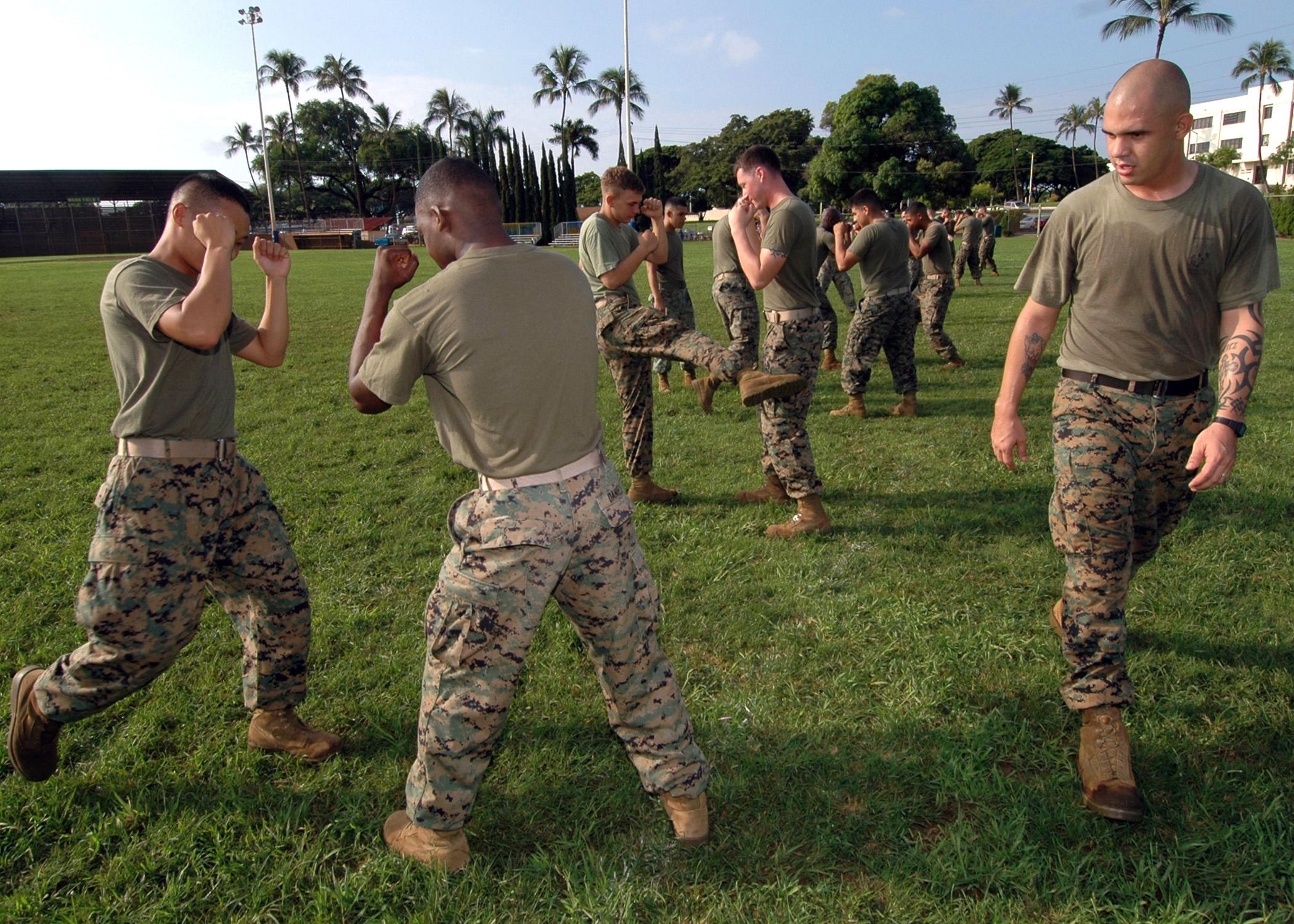 File:US Navy 061106-N-0879R-003 Marine Corps Sgt. Edward ...