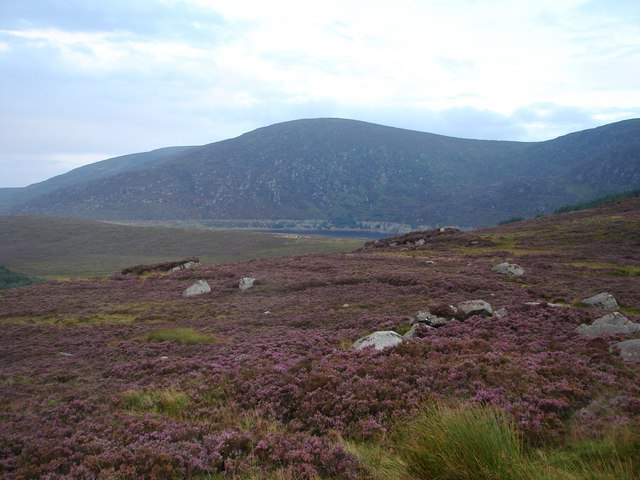 View from Wicklow Gap - geograph.org.uk - 930132