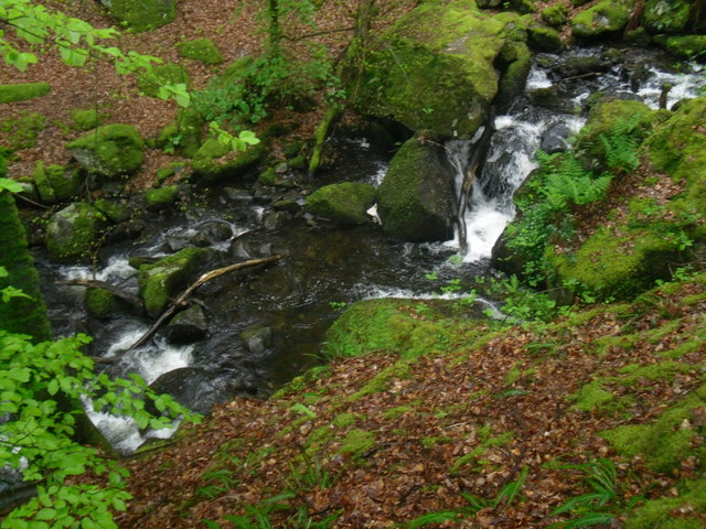Waterfalls in the Arthog Woods (1) - geograph.org.uk - 1310520