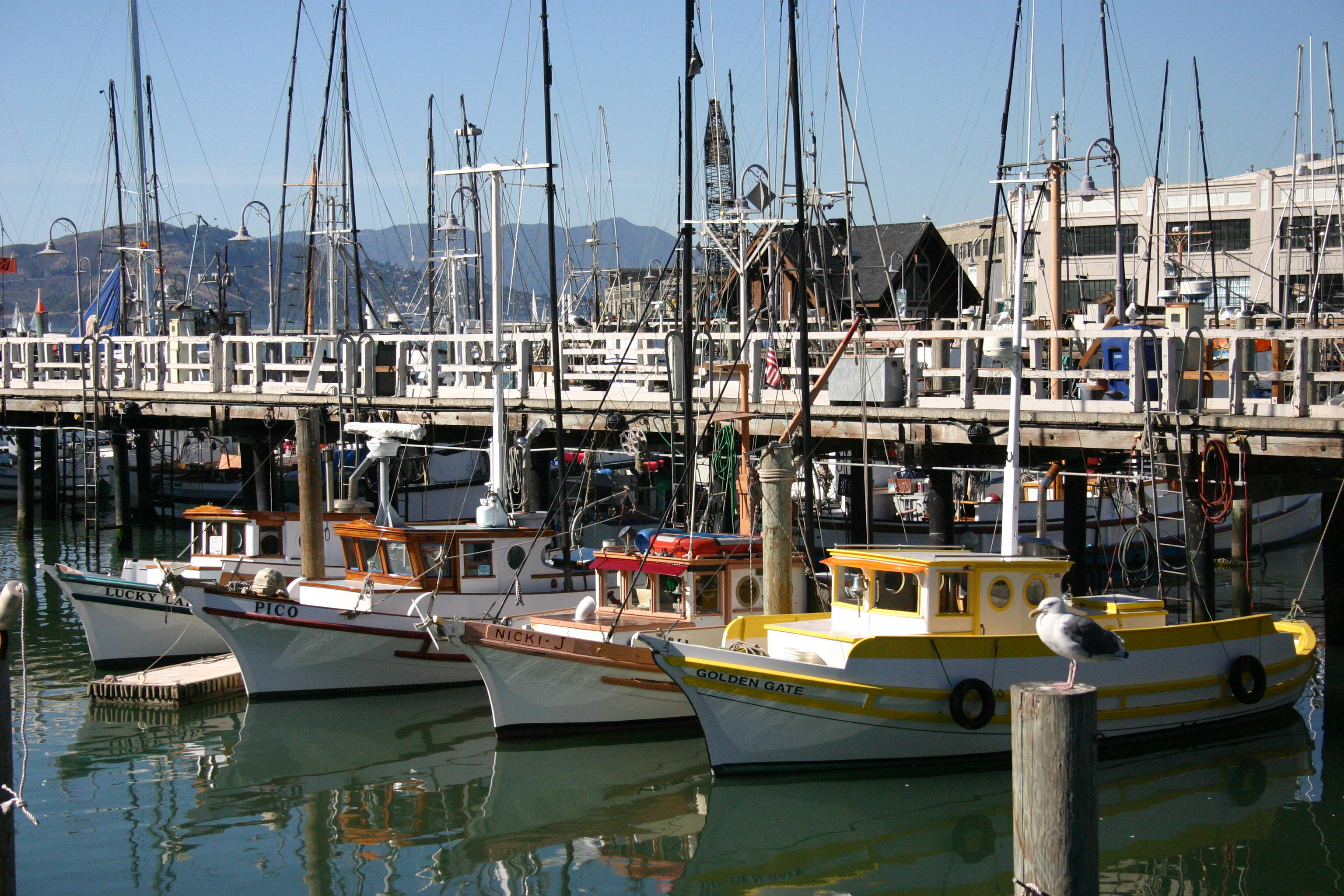 Boats in SF bay