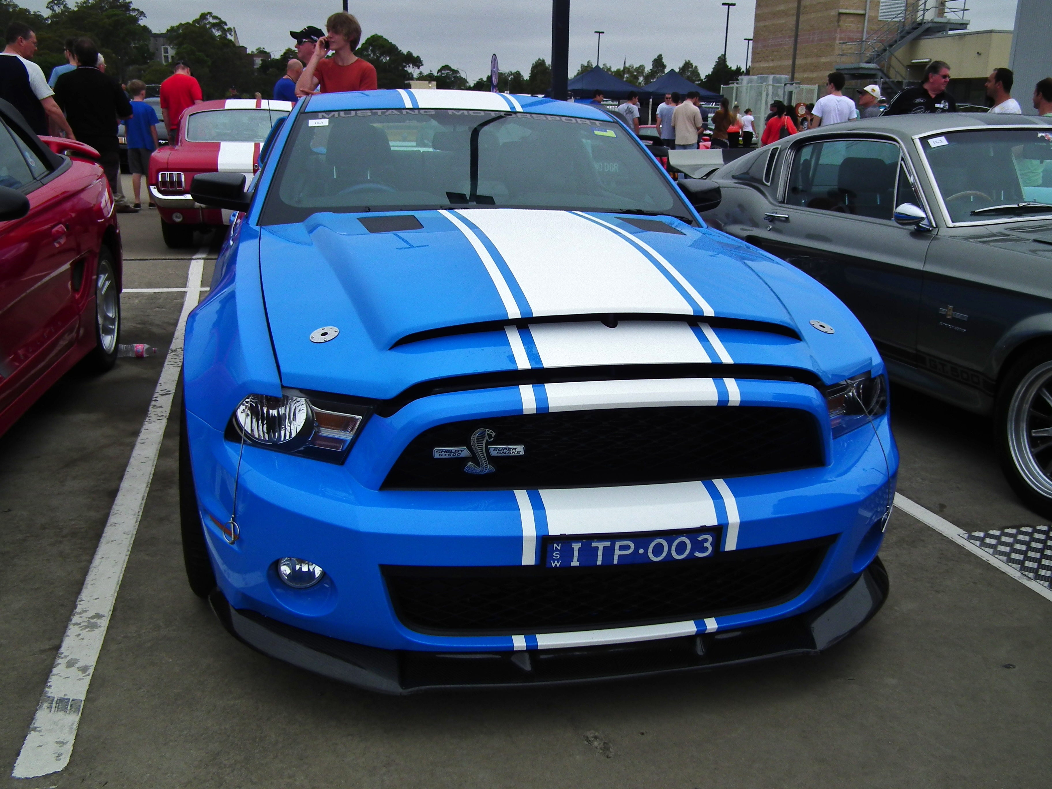 File:2012 Ford Mustang Shelby GT 500 Super Snake coupe (8453119256 ...