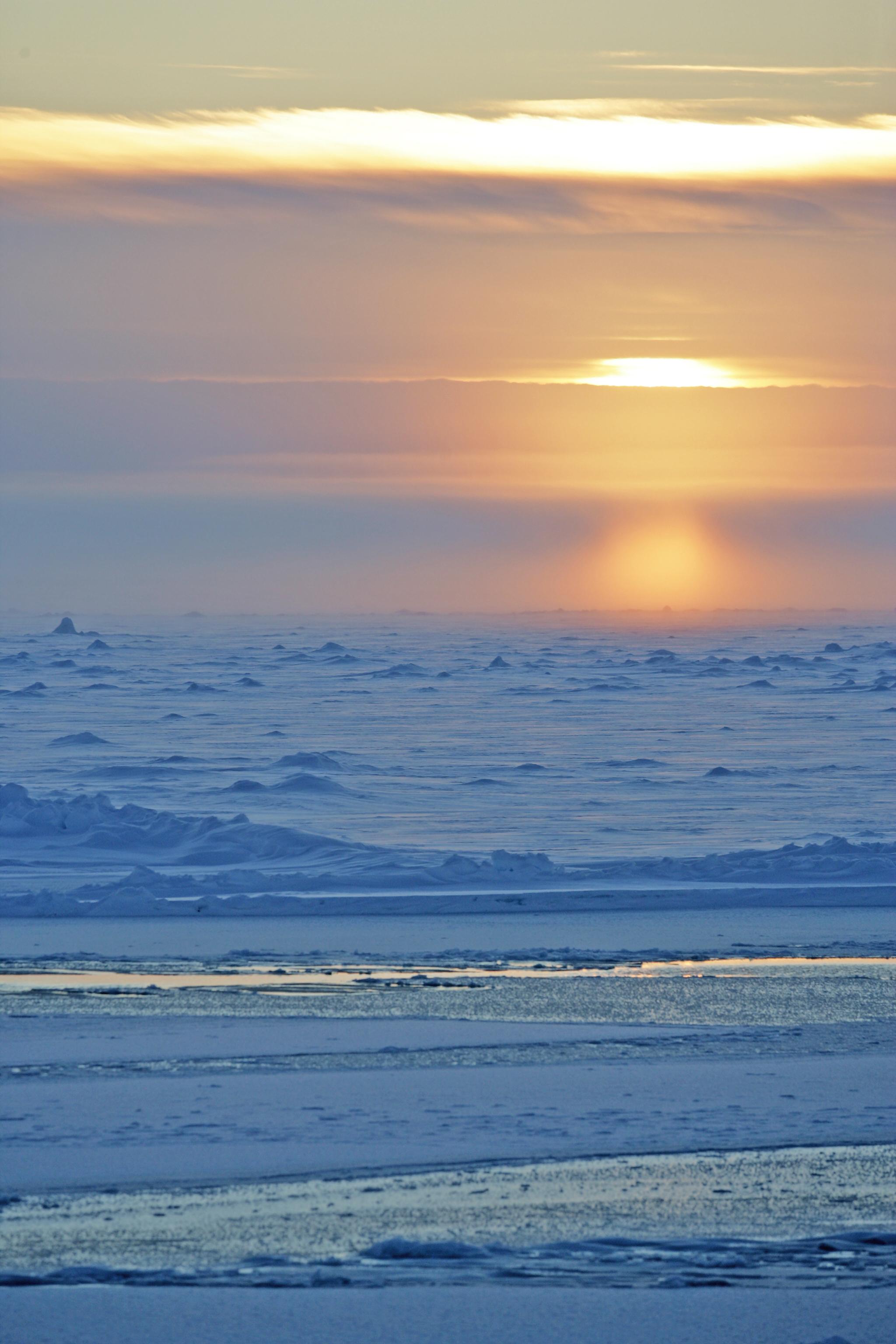 Arctic Natural Sciences Program Award